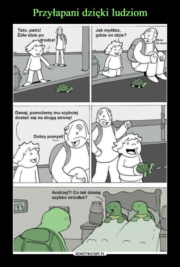 –  Tato, patrz!Żółw idzie poi drodze!Dawaj, pomożemy mu szybciejdostać się na drugą stronę!Jak myślisz,gdzie on idzie?Andrzej?! Co tak dzisiajszybko wróciłeś?