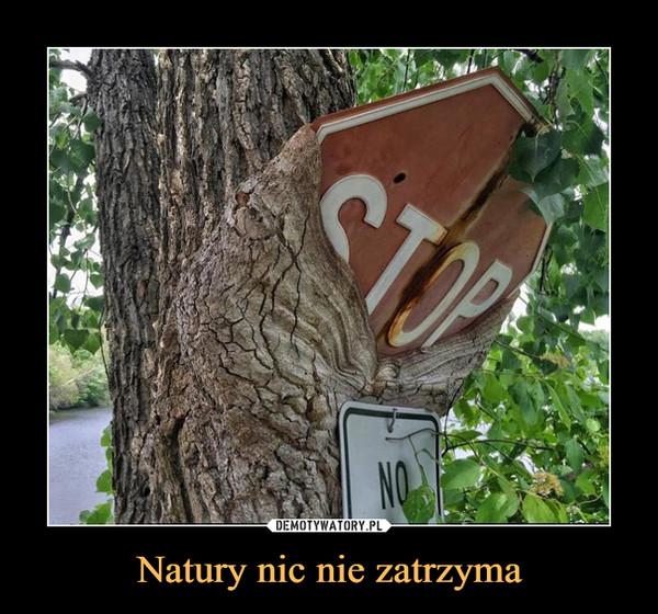Natury nic nie zatrzyma –