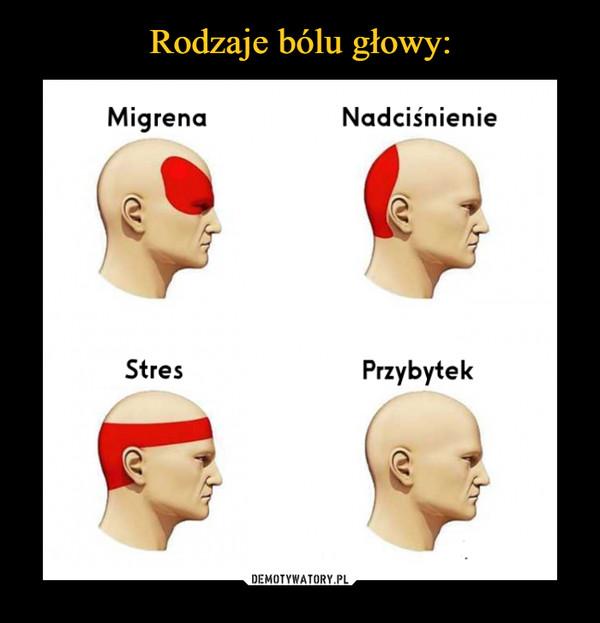 –  MigrenaNadciśnienieStresPrzybytek