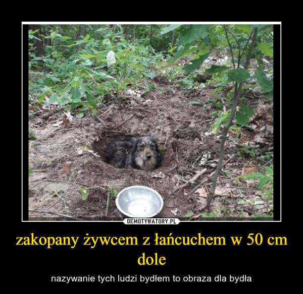 zakopany żywcem z łańcuchem w 50 cm dole – nazywanie tych ludzi bydłem to obraza dla bydła
