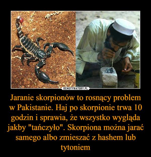 """Jaranie skorpionów to rosnący problem w Pakistanie. Haj po skorpionie trwa 10 godzin i sprawia, że wszystko wygląda jakby """"tańczyło"""". Skorpiona można jarać samego albo zmieszać z hashem lub tytoniem –"""