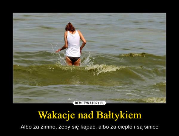 Wakacje nad Bałtykiem – Albo za zimno, żeby się kąpać, albo za ciepło i są sinice