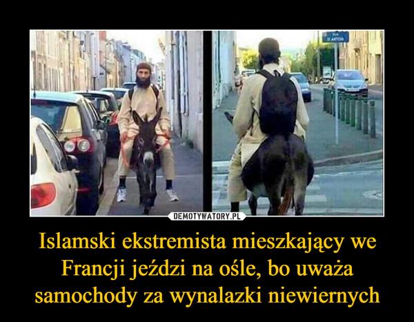 Islamski ekstremista mieszkający we Francji jeździ na ośle, bo uważa samochody za wynalazki niewiernych –