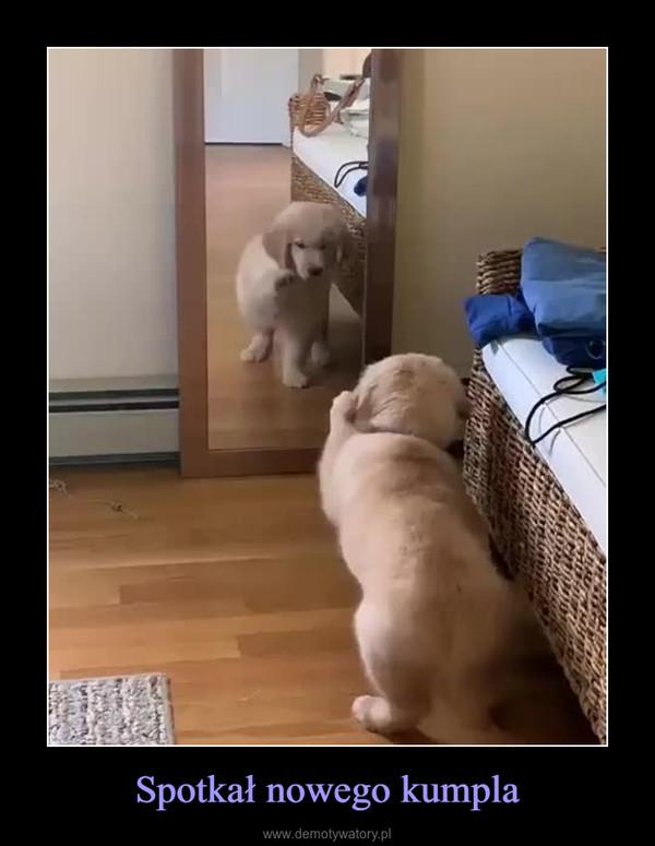 Spotkał nowego kumpla –
