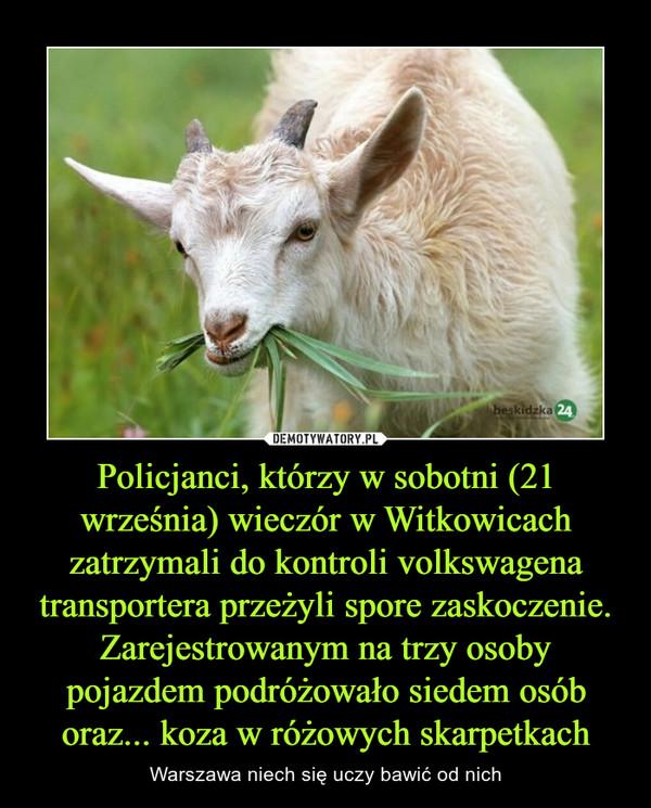 Policjanci, którzy w sobotni (21 września) wieczór w Witkowicach zatrzymali do kontroli volkswagena transportera przeżyli spore zaskoczenie. Zarejestrowanym na trzy osoby pojazdem podróżowało siedem osób oraz... koza w różowych skarpetkach – Warszawa niech się uczy bawić od nich