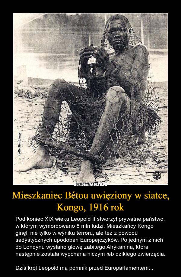 Mieszkaniec Bétou uwięziony w siatce, Kongo, 1916 rok – Pod koniec XIX wieku Leopold II stworzył prywatne państwo, w którym wymordowano 8 mln ludzi. Mieszkańcy Kongo ginęli nie tylko w wyniku terroru, ale też z powodu sadystycznych upodobań Europejczyków. Po jednym z nich do Londynu wysłano głowę zabitego Afrykanina, która następnie została wypchana niczym łeb dzikiego zwierzęcia.Dziś król Leopold ma pomnik przed Europarlamentem...