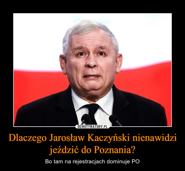 Dlaczego Jarosław Kaczyński nienawidzi jeździć do Poznania? – Bo tam na rejestracjach dominuje PO