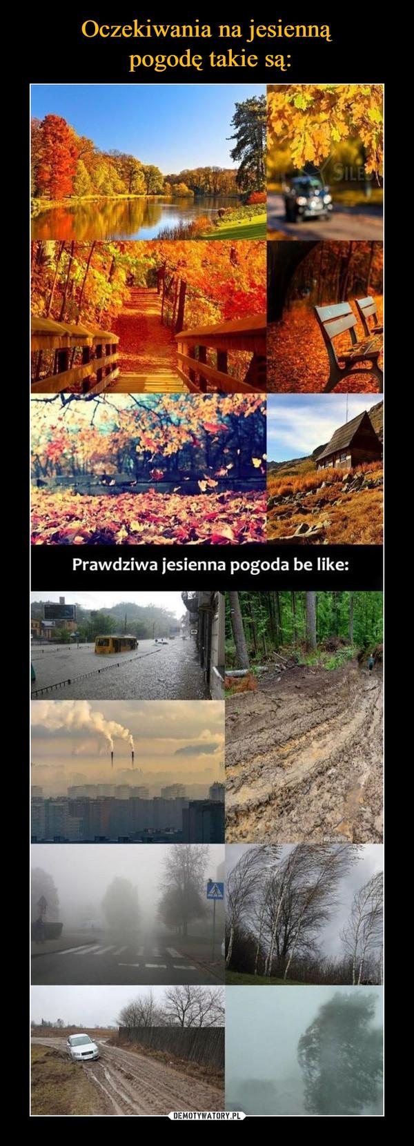 –  Prawdziwa jesienna pogoda be like