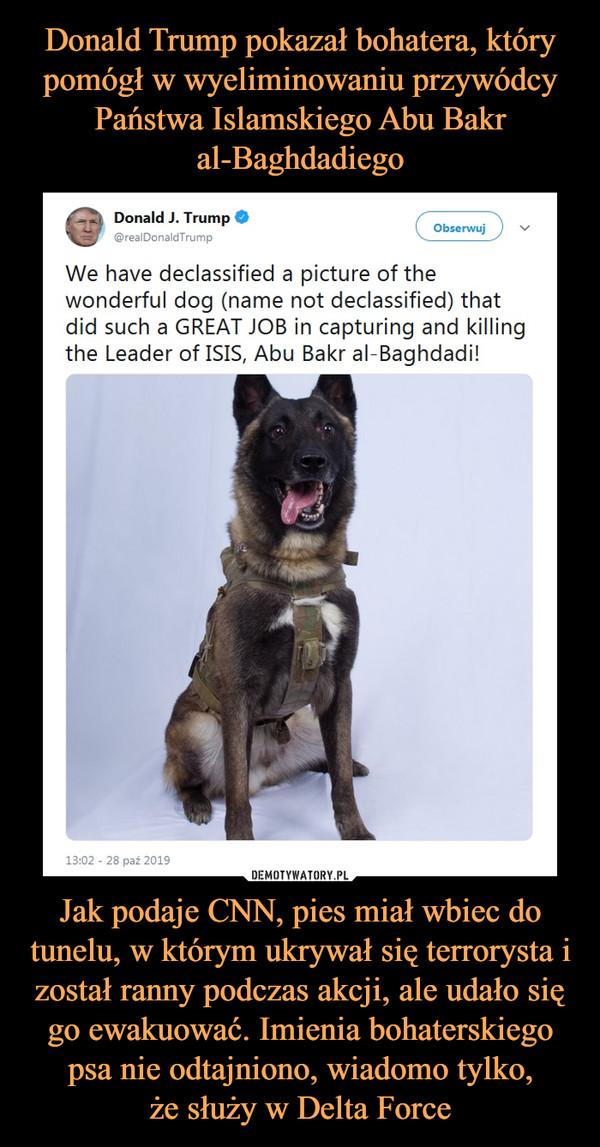 Jak podaje CNN, pies miał wbiec do tunelu, w którym ukrywał się terrorysta i został ranny podczas akcji, ale udało się go ewakuować. Imienia bohaterskiego psa nie odtajniono, wiadomo tylko,że służy w Delta Force –