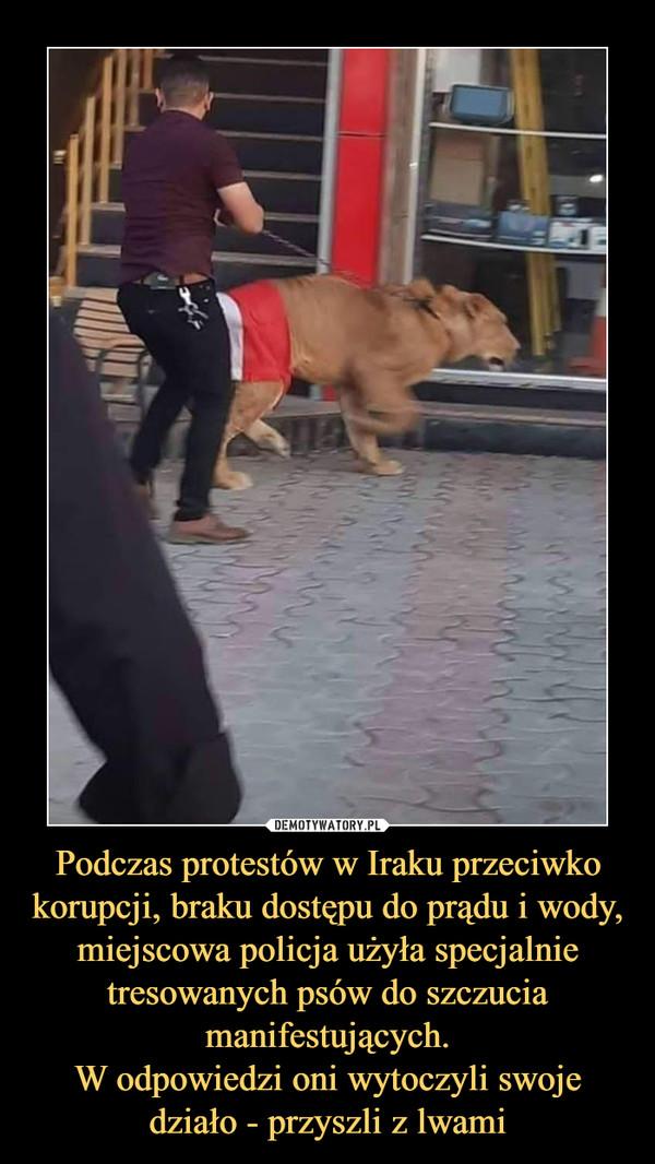 Podczas protestów w Iraku przeciwko korupcji, braku dostępu do prądu i wody, miejscowa policja użyła specjalnie tresowanych psów do szczucia manifestujących.W odpowiedzi oni wytoczyli swoje działo - przyszli z lwami –