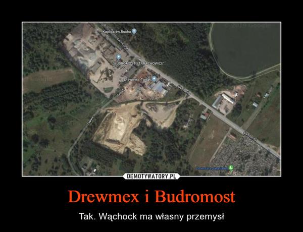 Drewmex i Budromost – Tak. Wąchock ma własny przemysł