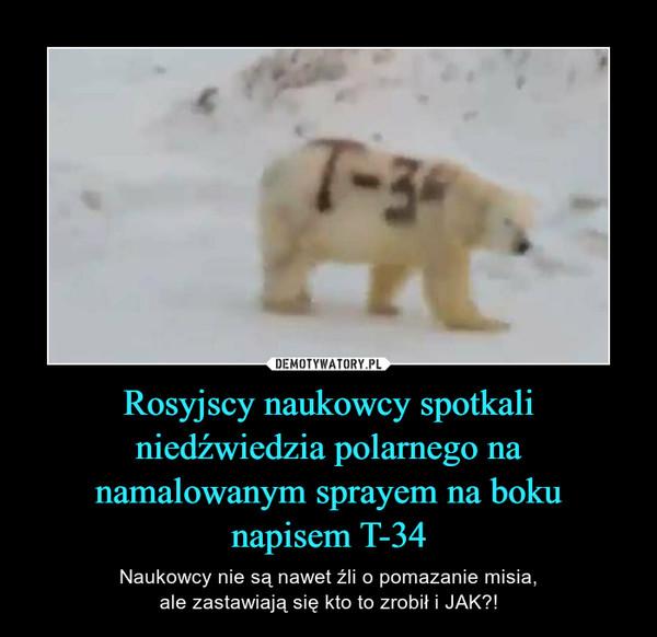 Rosyjscy naukowcy spotkali niedźwiedzia polarnego na namalowanym sprayem na bokunapisem T-34 – Naukowcy nie są nawet źli o pomazanie misia,ale zastawiają się kto to zrobił i JAK?!