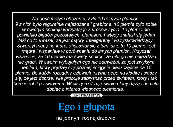 Ego i głupota