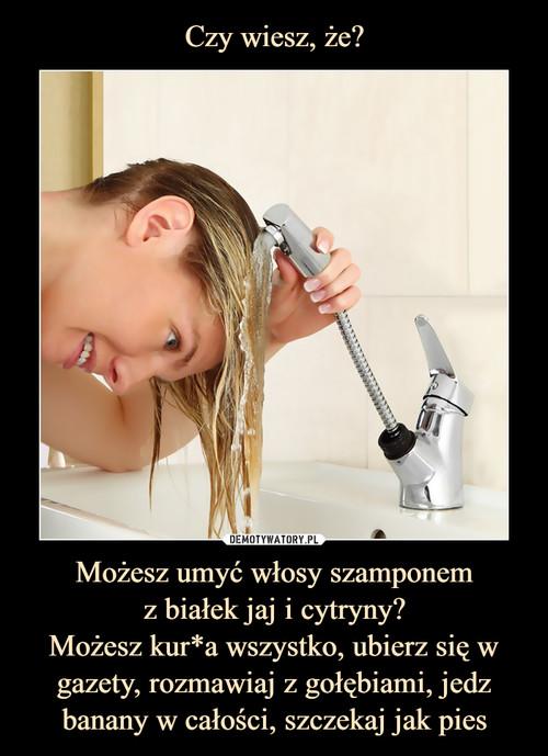 Czy wiesz, że? Możesz umyć włosy szamponem z białek jaj i cytryny? Możesz kur*a wszystko, ubierz się w gazety, rozmawiaj z gołębiami, jedz banany w całości, szczekaj jak pies