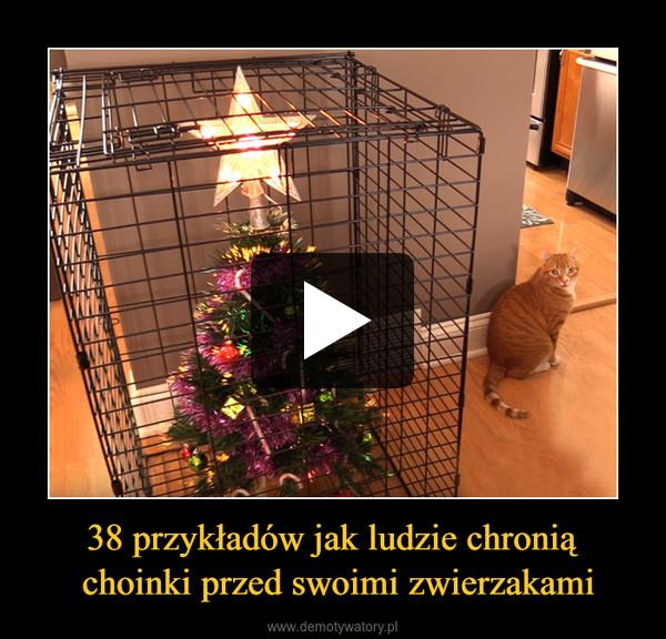 38 przykładów jak ludzie chronią choinki przed swoimi zwierzakami –