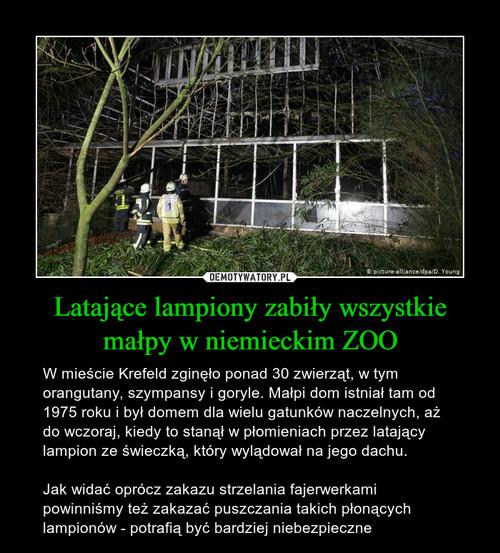 Latające lampiony zabiły wszystkie małpy w niemieckim ZOO