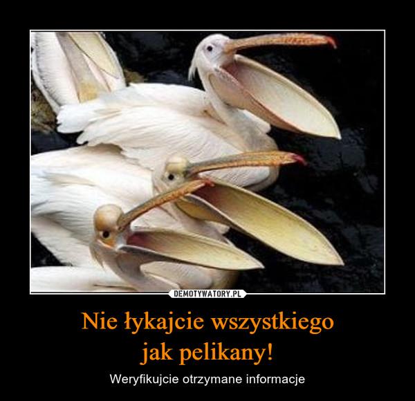 Nie łykajcie wszystkiegojak pelikany! – Weryfikujcie otrzymane informacje