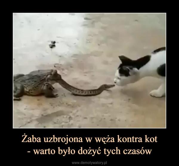 Żaba uzbrojona w węża kontra kot- warto było dożyć tych czasów –