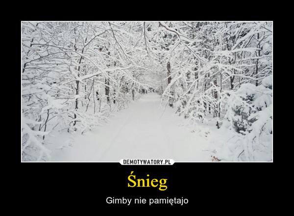 Śnieg – Gimby nie pamiętajo