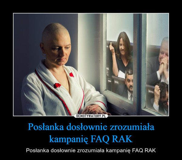 Posłanka dosłownie zrozumiała kampanię FAQ RAK – Posłanka dosłownie zrozumiała kampanię FAQ RAK