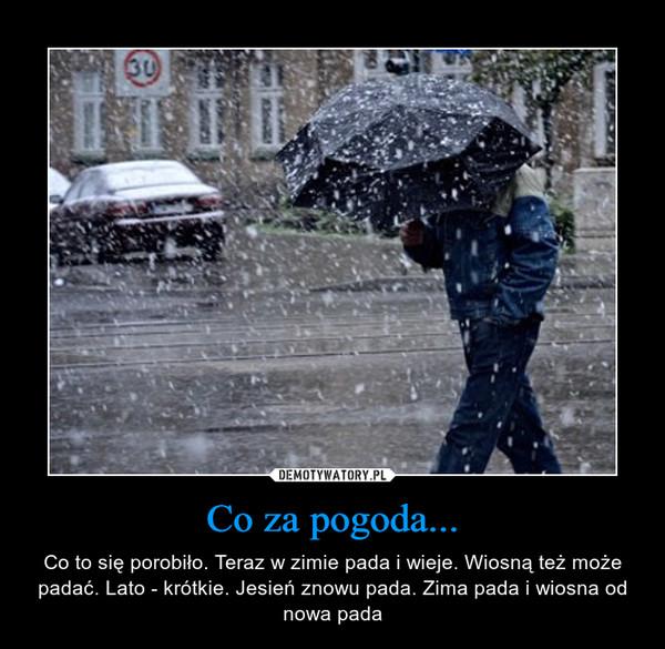 Co za pogoda... – Co to się porobiło. Teraz w zimie pada i wieje. Wiosną też może padać. Lato - krótkie. Jesień znowu pada. Zima pada i wiosna od nowa pada
