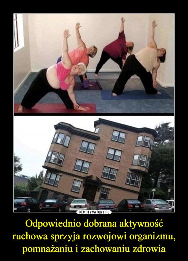 Odpowiednio dobrana aktywność ruchowa sprzyja rozwojowi organizmu, pomnażaniu i zachowaniu zdrowia –
