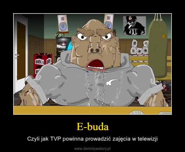 E-buda – Czyli jak TVP powinna prowadzić zajęcia w telewizji