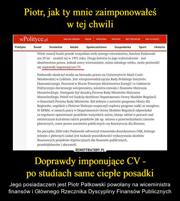 Doprawdy imponujące CV -po studiach same ciepłe posadki – Jego posiadaczem jest Piotr Patkowski powołany na wiceministra finansów i Głównego Rzecznika Dyscypliny Finansów Publicznych