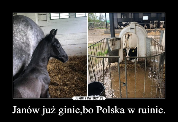 Janów już ginie,bo Polska w ruinie. –
