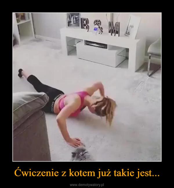 Ćwiczenie z kotem już takie jest... –