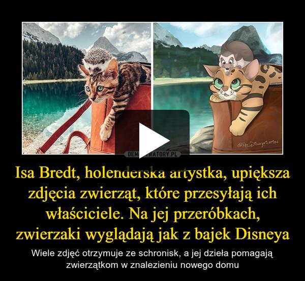 Isa Bredt, holenderska artystka, upiększa zdjęcia zwierząt, które przesyłają ich właściciele. Na jej przeróbkach, zwierzaki wyglądają jak z bajek Disneya – Wiele zdjęć otrzymuje ze schronisk, a jej dzieła pomagają zwierzątkom w znalezieniu nowego domu