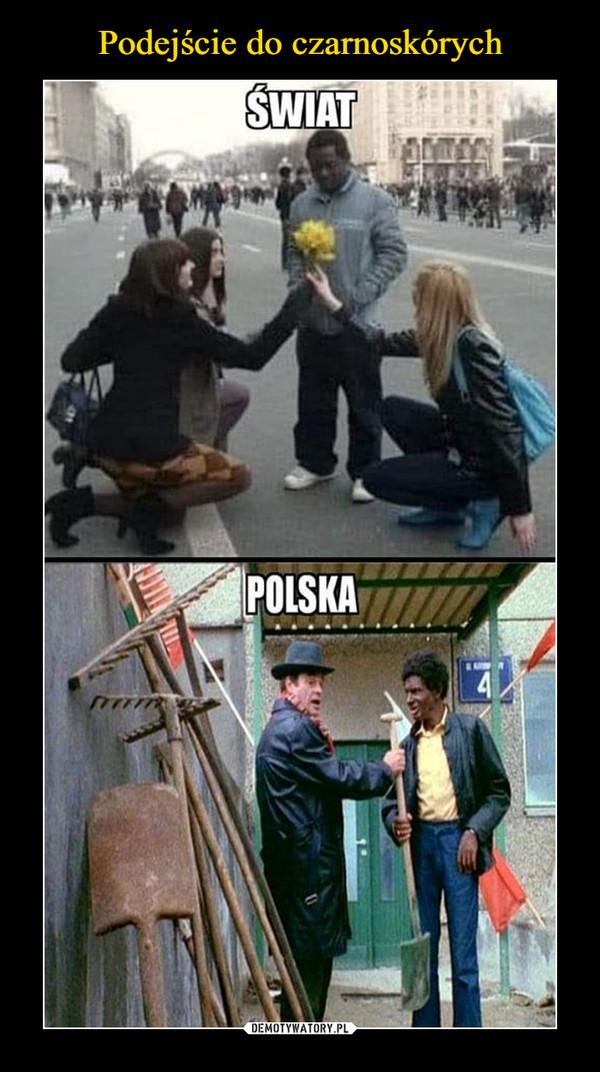 –  świat polska