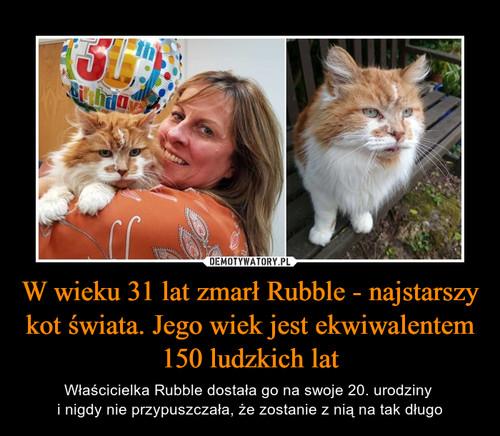 W wieku 31 lat zmarł Rubble - najstarszy kot świata. Jego wiek jest ekwiwalentem 150 ludzkich lat