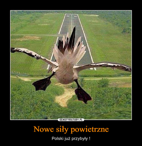 Nowe siły powietrzne