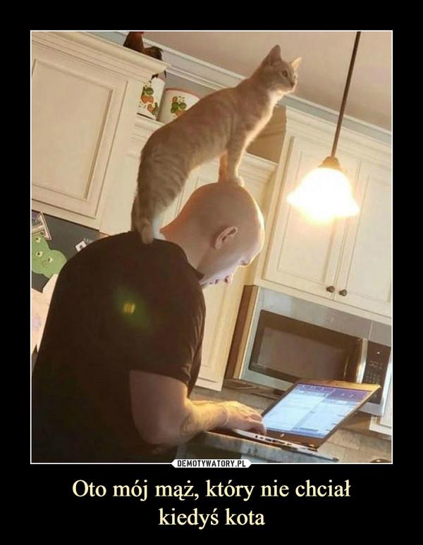 Oto mój mąż, który nie chciałkiedyś kota –