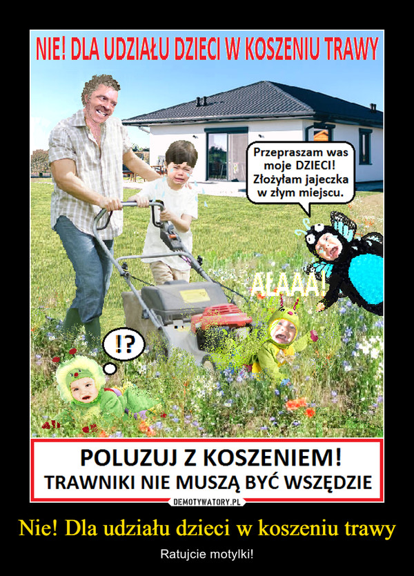 Nie! Dla udziału dzieci w koszeniu trawy – Ratujcie motylki!