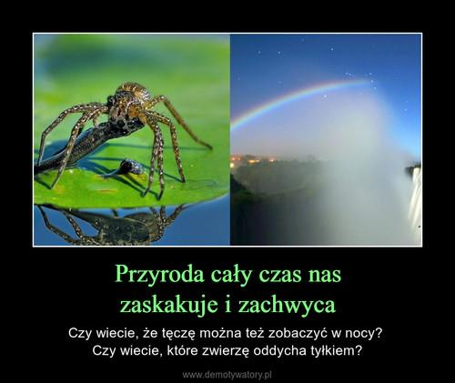 Przyroda cały czas nas zaskakuje i zachwyca