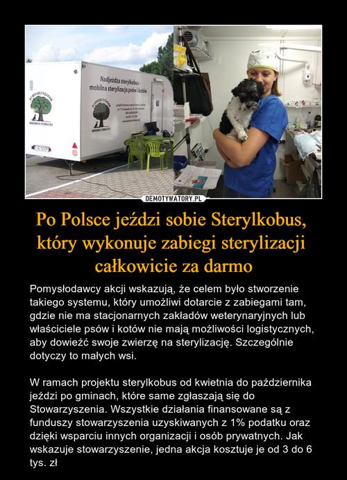 Po Polsce jeździ sobie Sterylkobus,  który wykonuje zabiegi sterylizacji  całkowicie za darmo