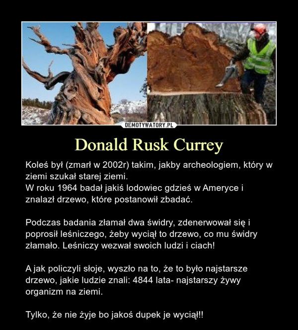 Donald Rusk Currey – Koleś był (zmarł w 2002r) takim, jakby archeologiem, który w ziemi szukał starej ziemi.W roku 1964 badał jakiś lodowiec gdzieś w Ameryce i znalazł drzewo, które postanowił zbadać.Podczas badania złamał dwa świdry, zdenerwował się i poprosił leśniczego, żeby wyciął to drzewo, co mu świdry złamało. Leśniczy wezwał swoich ludzi i ciach!A jak policzyli słoje, wyszło na to, że to było najstarsze drzewo, jakie ludzie znali: 4844 lata- najstarszy żywy organizm na ziemi.Tylko, że nie żyje bo jakoś dupek je wyciął!!