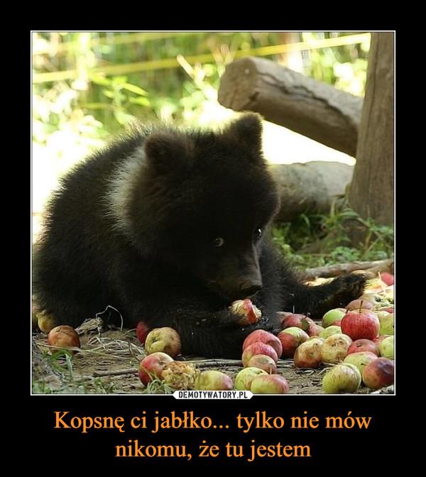 Kopsnę ci jabłko... tylko nie mów nikomu, że tu jestem –