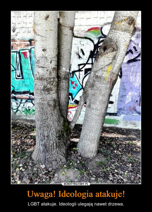 Uwaga! Ideologia atakuje! – LGBT atakuje. Ideologii ulegają nawet drzewa.