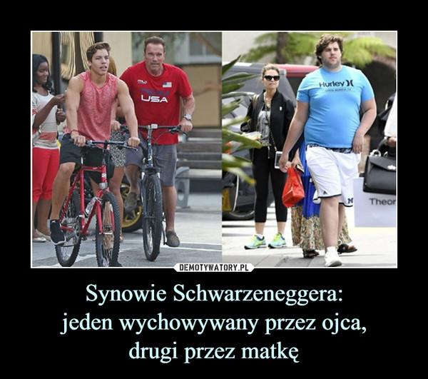 Synowie Schwarzeneggera:jeden wychowywany przez ojca,drugi przez matkę –