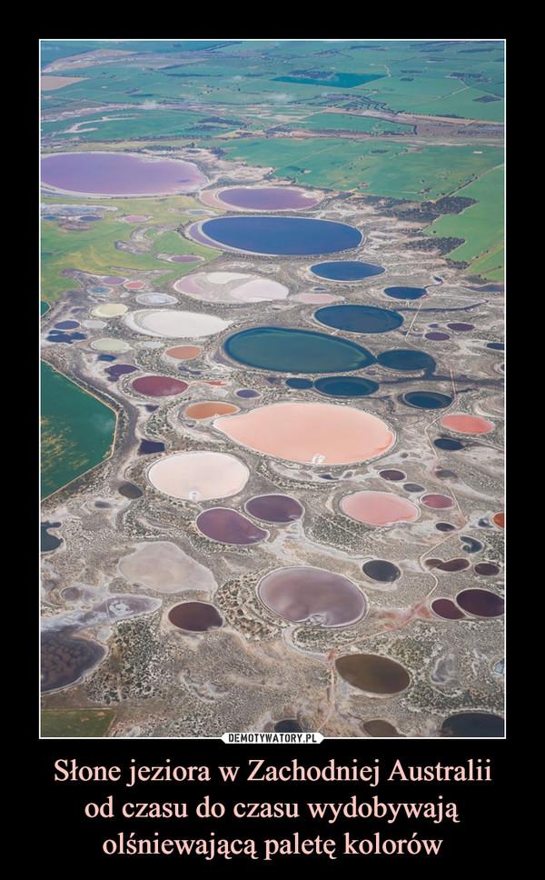 Słone jeziora w Zachodniej Australiiod czasu do czasu wydobywają olśniewającą paletę kolorów –