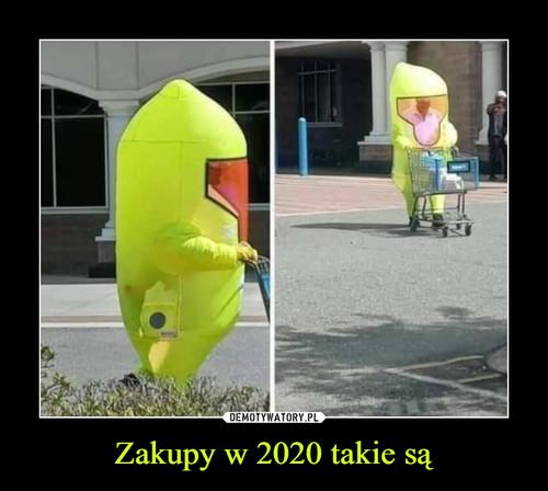 Zakupy w 2020 takie są