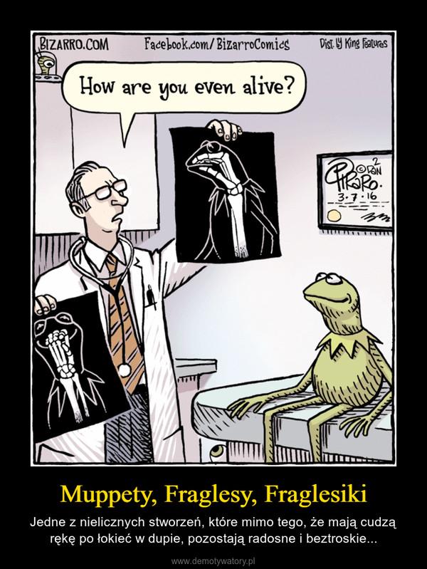 Muppety, Fraglesy, Fraglesiki – Jedne z nielicznych stworzeń, które mimo tego, że mają cudzą rękę po łokieć w dupie, pozostają radosne i beztroskie...