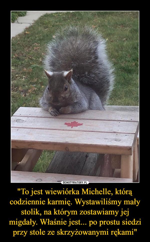 """""""To jest wiewiórka Michelle, którą codziennie karmię. Wystawiliśmy mały stolik, na którym zostawiamy jej migdały. Właśnie jest... po prostu siedzi przy stole ze skrzyżowanymi rękami"""" –"""