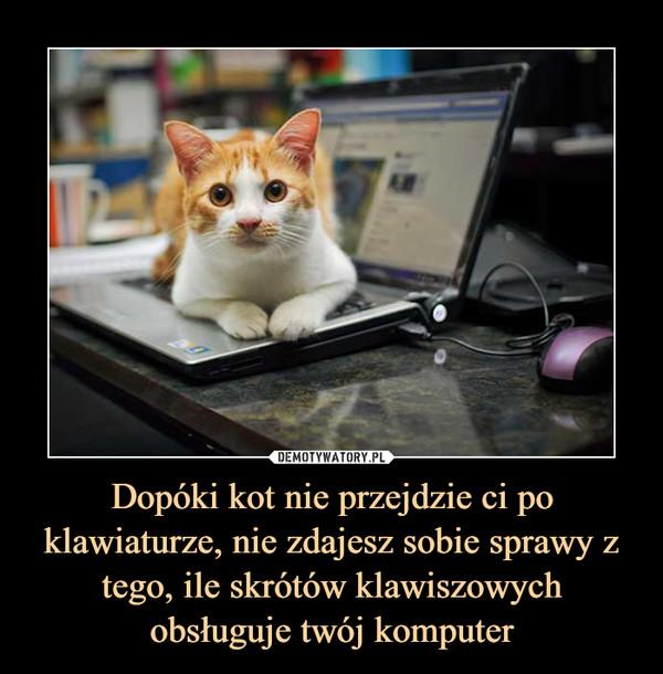 Dopóki kot nie przejdzie ci po klawiaturze, nie zdajesz sobie sprawy z tego, ile skrótów klawiszowych obsługuje twój komputer –