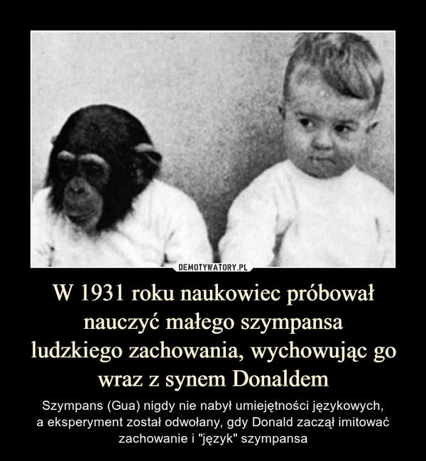 """W 1931 roku naukowiec próbował nauczyć małego szympansaludzkiego zachowania, wychowując go wraz z synem Donaldem – Szympans (Gua) nigdy nie nabył umiejętności językowych,a eksperyment został odwołany, gdy Donald zaczął imitować zachowanie i """"język"""" szympansa"""