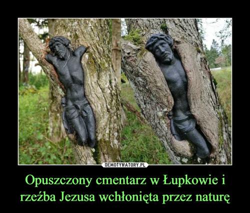 Opuszczony cmentarz w Łupkowie i rzeźba Jezusa wchłonięta przez naturę