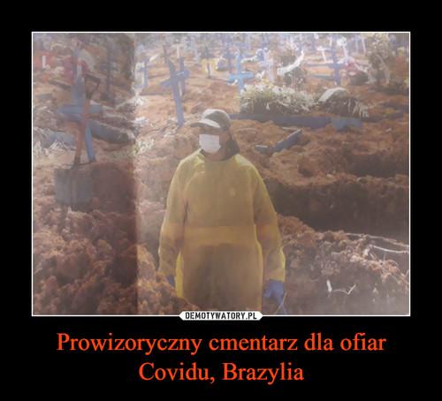 Prowizoryczny cmentarz dla ofiar Covidu, Brazylia